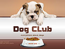 Dog Club Easy flash template