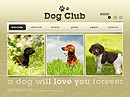 Dog Club Easy flash templates