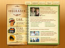 Insurance Flash template
