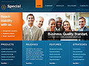 Item number: 300110901 Name: Special Solutions Type: HTML template