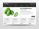 New Business HTML5 templates