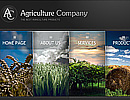 Item number: 300110029 Name: Agricultura Type: Website template