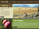 free Agro co. website template