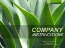 GreenWorld - Powerpoint templates, Agriculture  flash templates